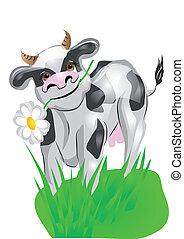 pelouse, vert, vache