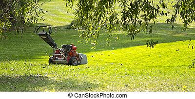 pelouse verte, jour ensoleillé, faucheur