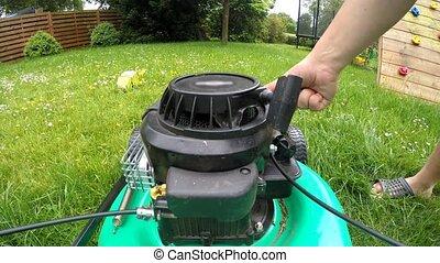 pelouse, vue, côté, mower., faucheur