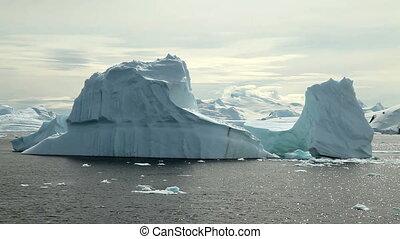 península, icebergs, antártica