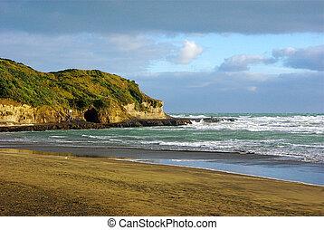 península, playa, muriwai