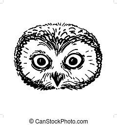 Pen and ink owl head sketch