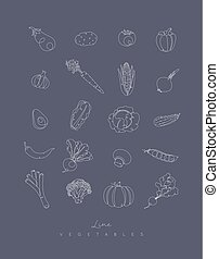 Pen line vegetables icons grey