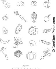 Pen line vegetables icons