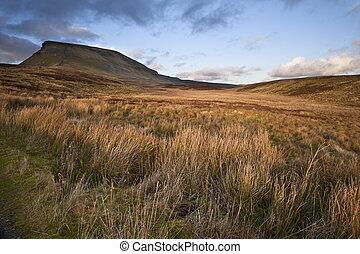 pen-y-ghent, parque nacional, yorkshire, páramos, manera,...