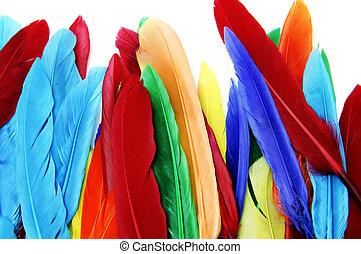 penas, colorido