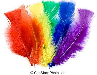 penas, coloridos