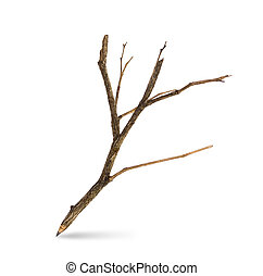Pencil tree shaped on white background