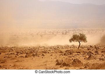 pendant, plaines, poussiéreux, sécheresse