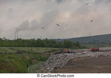 pendant, poussées, grand, déchets, jour, montagne, chaleur, ville, tracteur, temps, mouettes, nombre, fond, été, décharge, bulldozer, clair