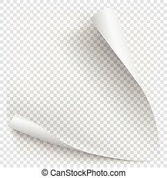 pendenza, bianco, carta, riccio