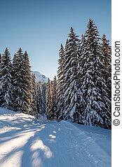 pendiente, alpes, soleado, francia francesa, megeve, esquí