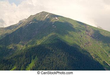 pendio, montagna, desolato, denso, coperto, foresta, chiudere, nubi, bianco, ripido, pendii, vista