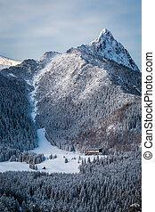 pendio, montagne, piede, sci, inverno
