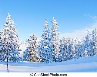 pendio, sciare
