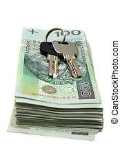 pengar, hus, polska, bakgrund, isolerat, stämm, buntar, vit