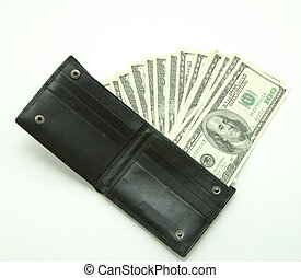 pengar, in, plånbok