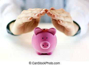 pengar, skydda, din