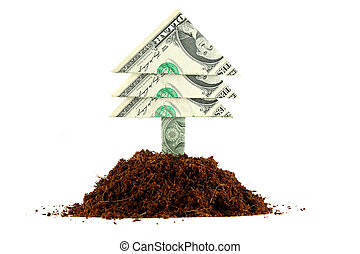 pengar träd