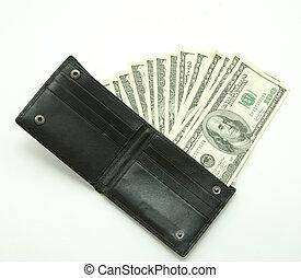 penge, ind, tegnebog