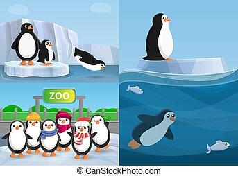 Penguin banner set, cartoon style