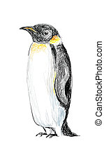 Penguin Hand Drawn