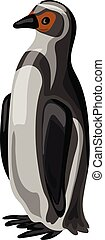 Penguin icon, cartoon style