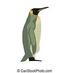 Penguin, isolated vector flat illustration. Side view