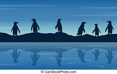 penguin on hill at night landscape