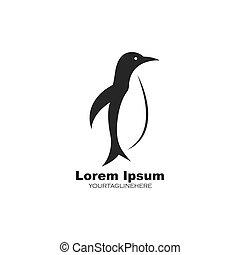 penguin vector illustration design