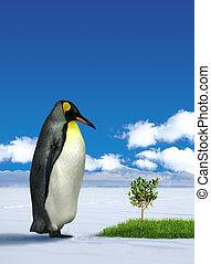 Penguin wondering grass - Lone penguin wondering green grass...
