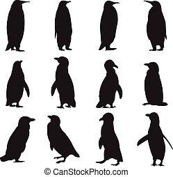 penguins', silhouettes, verzameling
