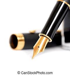 penna fontana, con, inchiostro, bottiglia