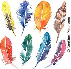 penna, set., illustrazione, acquarello, vettore, mano, disegnato
