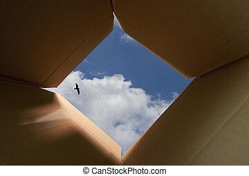 pensando, caixa, exterior, conceito