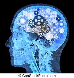 pensatore, intellettuale