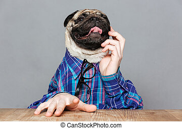 Pensive pug dog with man hands sitting and thinking