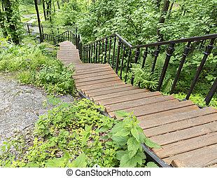 pente, escalier, bois, parc, bosquet, bas, va, sentier