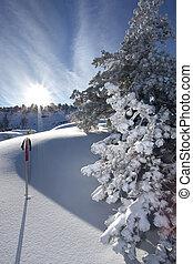 pente, ski, jour ensoleillé