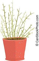 pentola pianta, interno, verde, delicato, frondoso