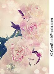 peonies in a vase old photo