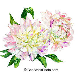 Peonies, oil painting on canvas - Peonies isolated on white,...