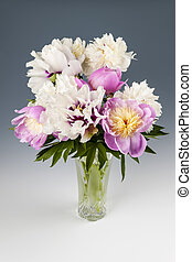 Peony flower bouquet - Bouquet of pink and white peony...
