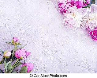 peony flower on gray concrete background