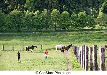 People and horses.