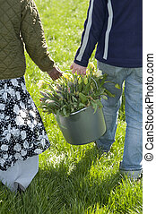 people carry yellow tulips in buckets
