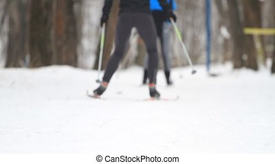 People cross country skiing in winter park