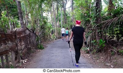 people do Nordic walking - group people in park doing nordic...