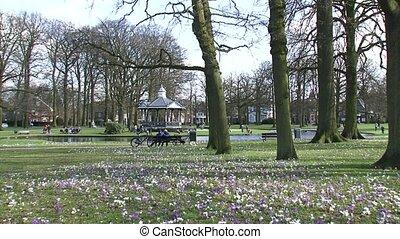 people enjoying spring in city park
