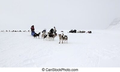 People expedition on dog sled team husky Eskimo North Pole in Arctic. Way from airport Longyear to Pyramid Spitsbergen on background of glacier mountains Svalbard in Norway.